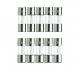 Glaszekering 5x20 mm 2 Ampere / 10 Stuks