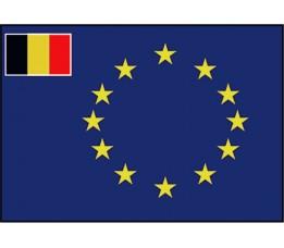 Vlag Raad Van Europa RVE - Belgie 40x60 cm