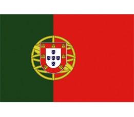 Vlag Portugal 20x30 cm