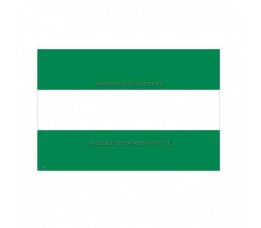 Vlag Rotterdam 30x45 cm